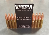 NEW - 300 AAC BLACKOUT - 220gr SUBSONIC